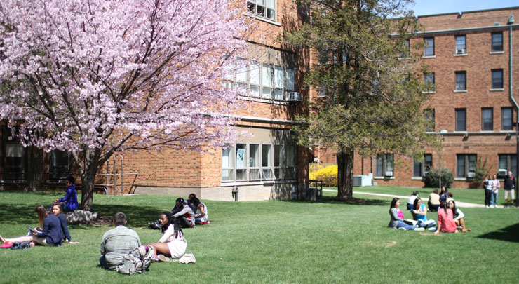 Students Relaxing on the Lawn at Caldwell University