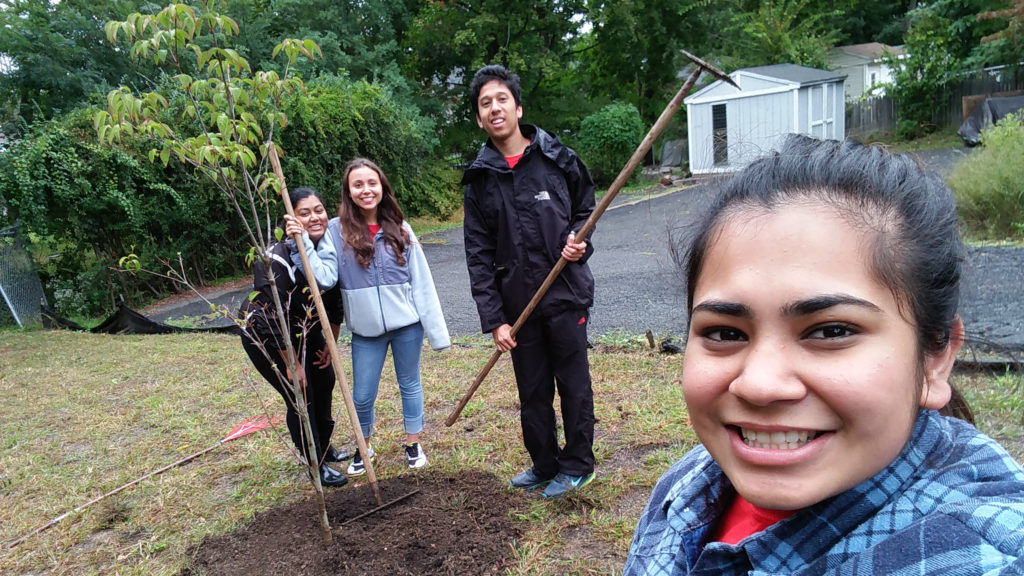 Students Volunteering at Local park