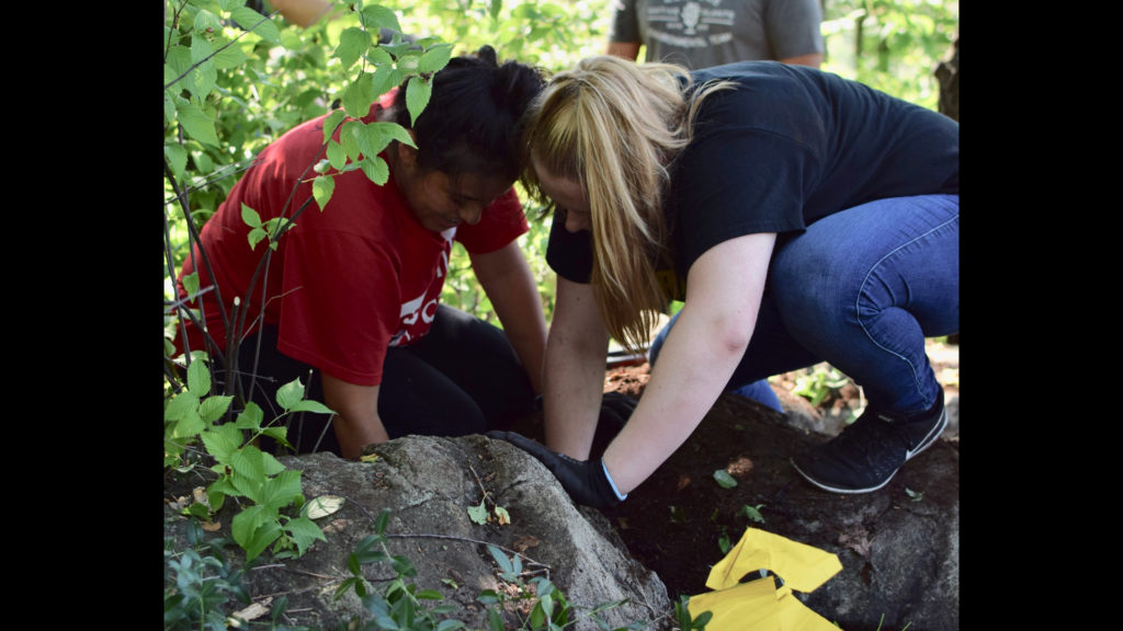Caldwell University student digging inside a rock during some activities on Treetop course.