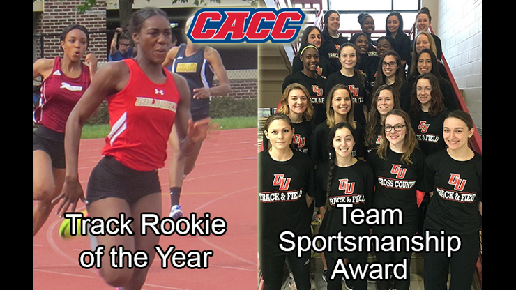 Rookie of the year and team sportsmanship award flyer