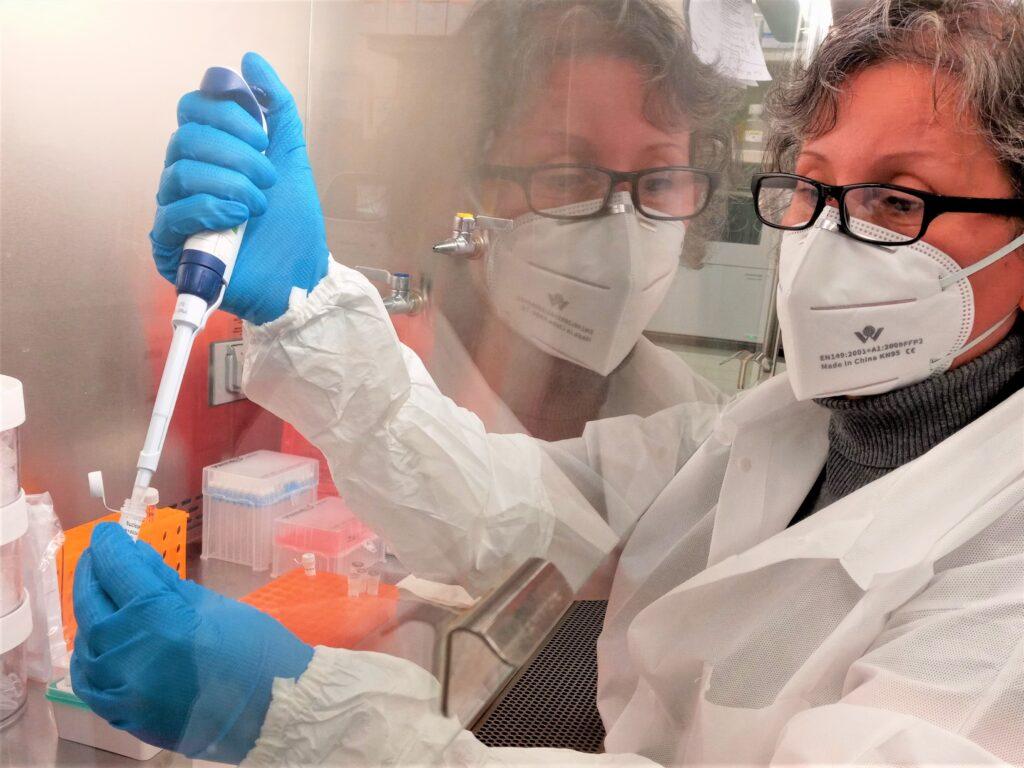 Professor Berki analyzing the COVID virus